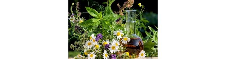 Ätherische Öle (naturrein)